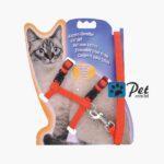 Katzen-Garnitur Cat Set - Harness & Lead (Red)